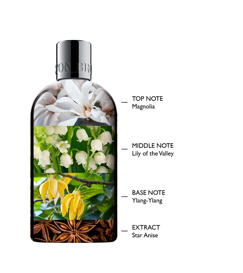 Fragrance-Pyramid-LoV